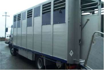 Caja en aluminio para transporte de ganado bovino.